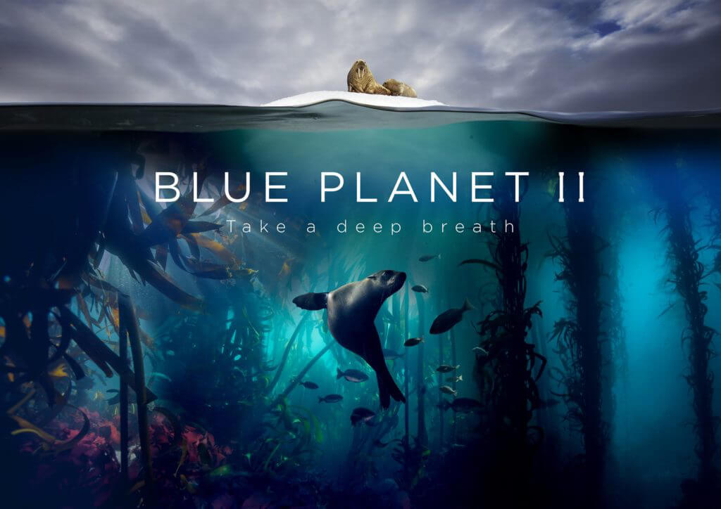 BLUE PLANET II - BBC One